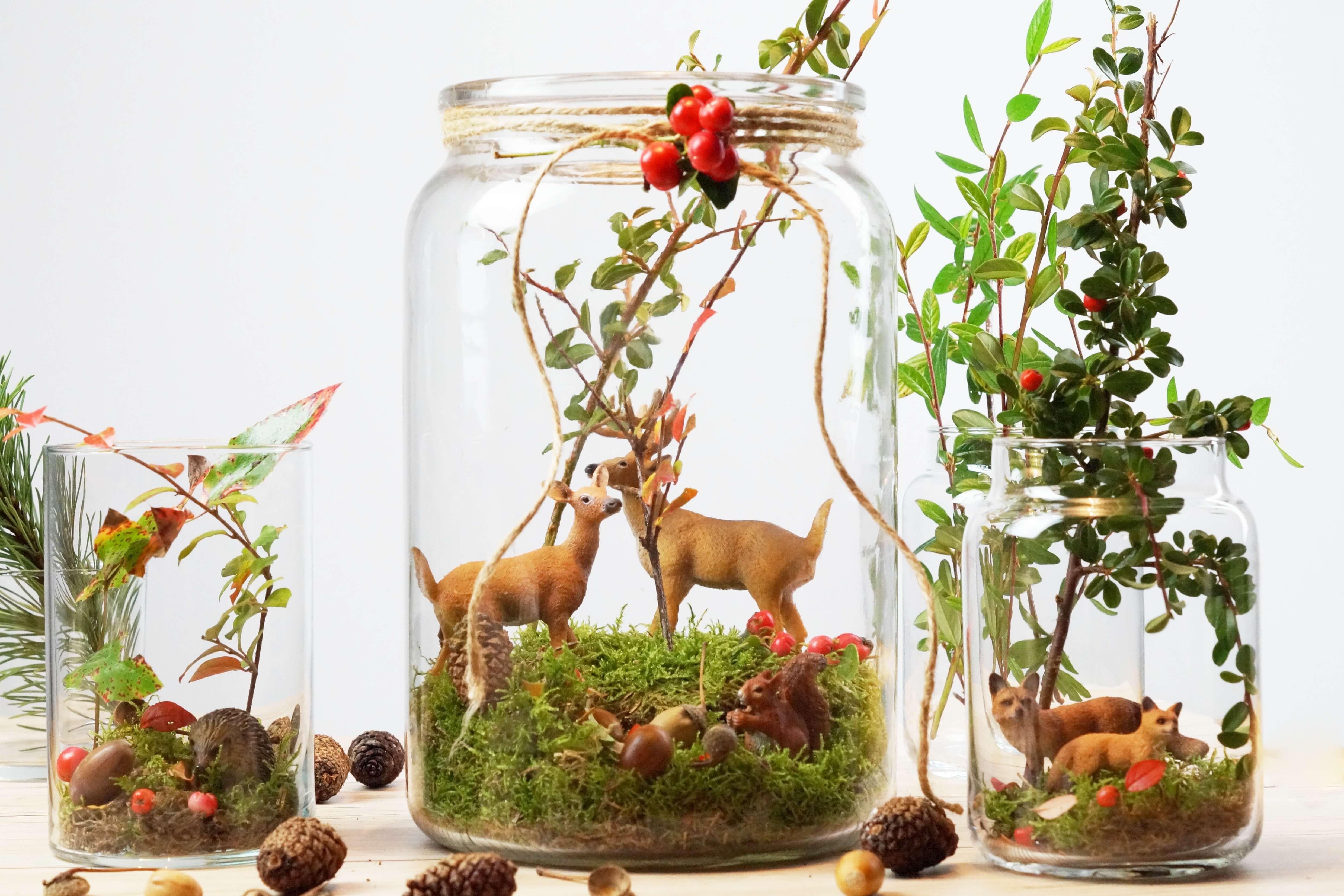 Diy herbstwald im glas tantedine for Herbst dekoration im glas