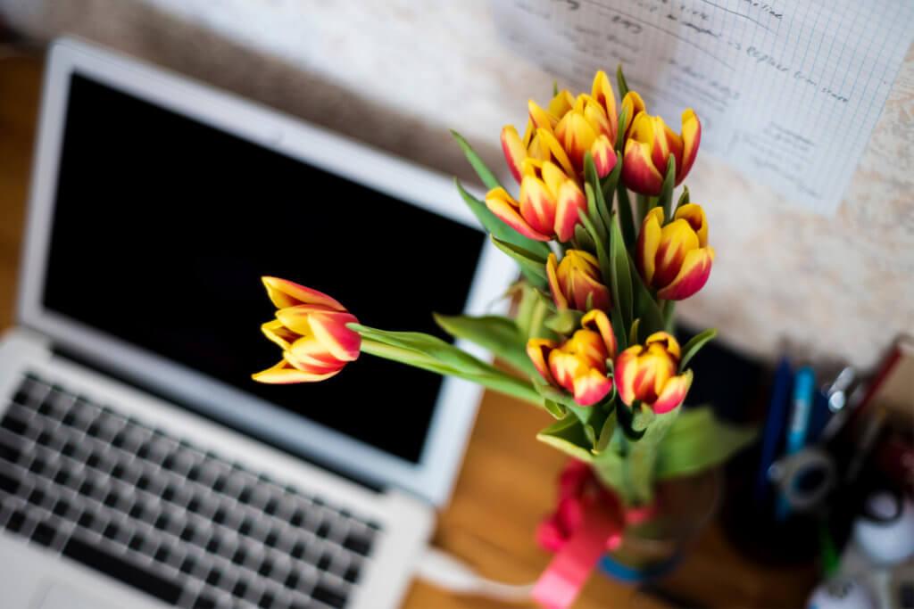 was-du-wissen-solltest-bevor-du-einen-blog-erstellst-blogger-tipps-tantedine