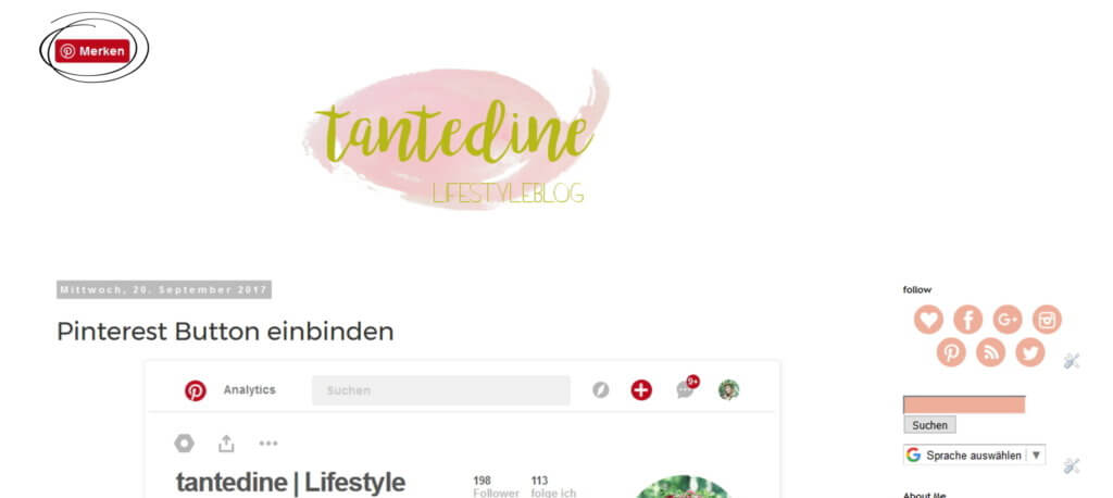 Pinterest Hover Pin it Button einfügen tantedine