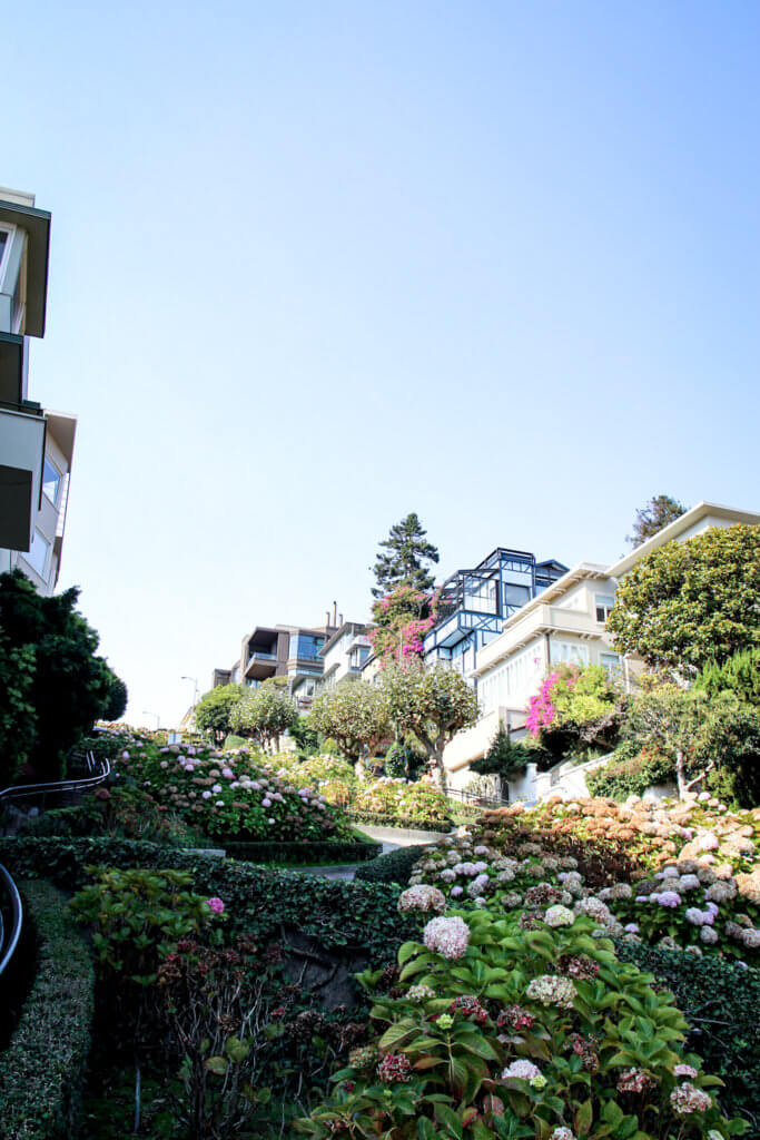 San Francisco Lombard Street tantedine
